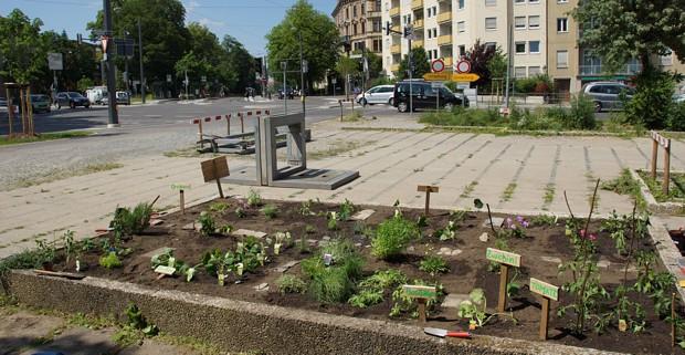 gr ne augsburg gr nes urban gardening projekt am theodor heuss platz. Black Bedroom Furniture Sets. Home Design Ideas